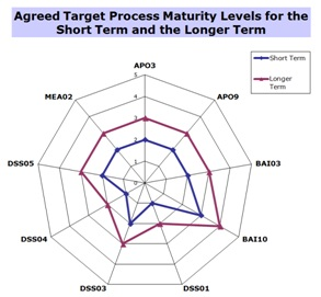 Agreed-Target-Process-Maturity-Levels-for-ST-and-LT
